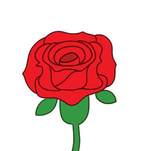 バラの書き方 イラストを簡単に初心者でも描くコツは イラストの簡単