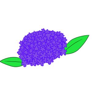 紫陽花 書き方