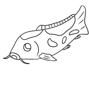 鯉 書き方