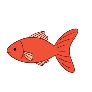 金魚 イラスト 簡単
