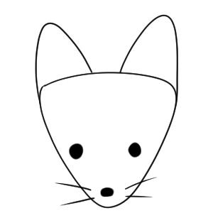 狐 描き方