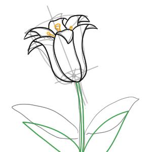 百合の書き方は 花のイラストを簡単に描くポイントは イラストの簡単な書き方あつめました