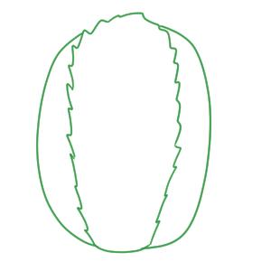 白菜 イラスト 簡単
