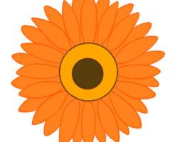 ガーベラ イラスト 簡単