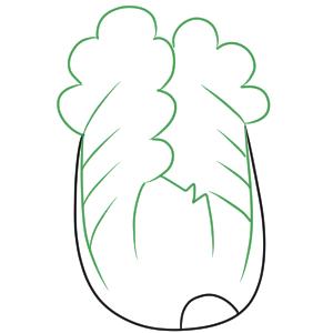 白菜 イラスト 描き方