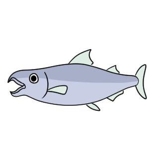 鮭 イラスト 簡単