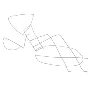 カマキリ イラスト 簡単