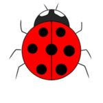 てんとう虫のイラストの簡単な書き方 手書きで描くなら?