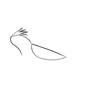 ひばり イラスト 簡単
