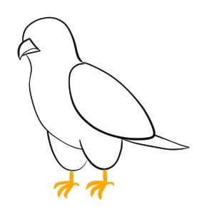 はやぶさ イラスト 簡単 鳥