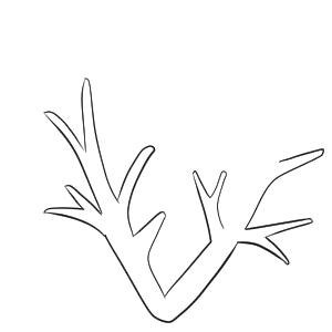 サンゴ イラスト 書き方