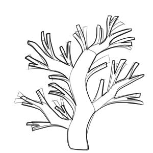 サンゴ イラスト 簡単